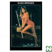 POSTER ELISA BRIDGES cm. 88x60